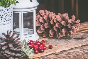 brown-pinecone-beside-candle-lantern-699372-1