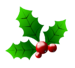 christmas-holly-clipart-holly3.png