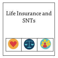 Life Insurance +SNT